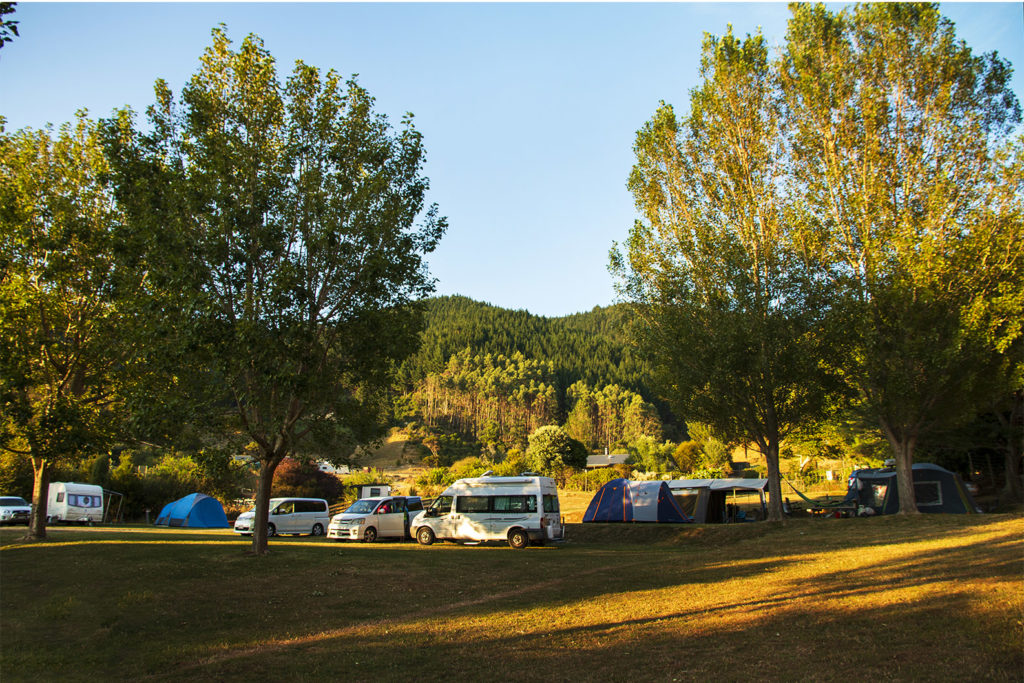 Cable Bay Campground - Outdoor Area